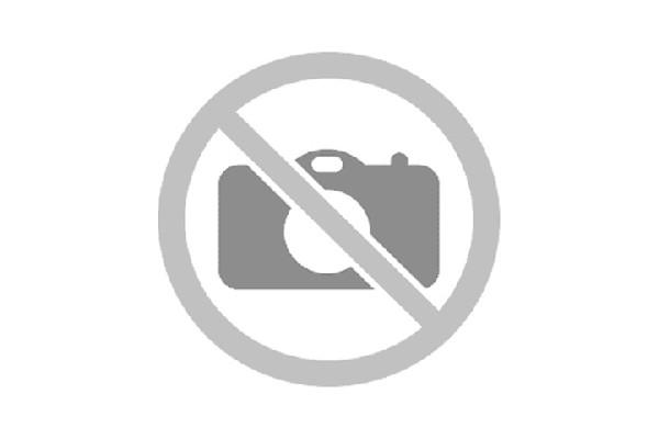 La sculpture de José Séguiri.
